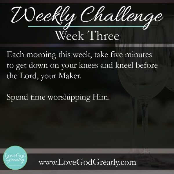 Week 3 Challenge - Each Morning this week, take five minutes to get down on your knees and kneel before the Lord, your Maker. Spend time worshipping Him.