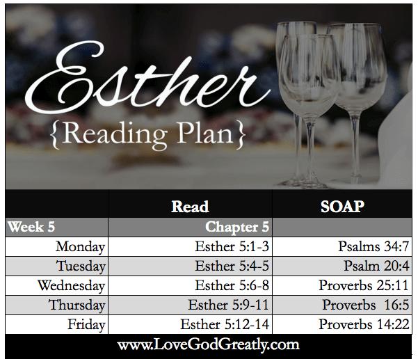 Esther Bible Study Week 5 Reading Plan