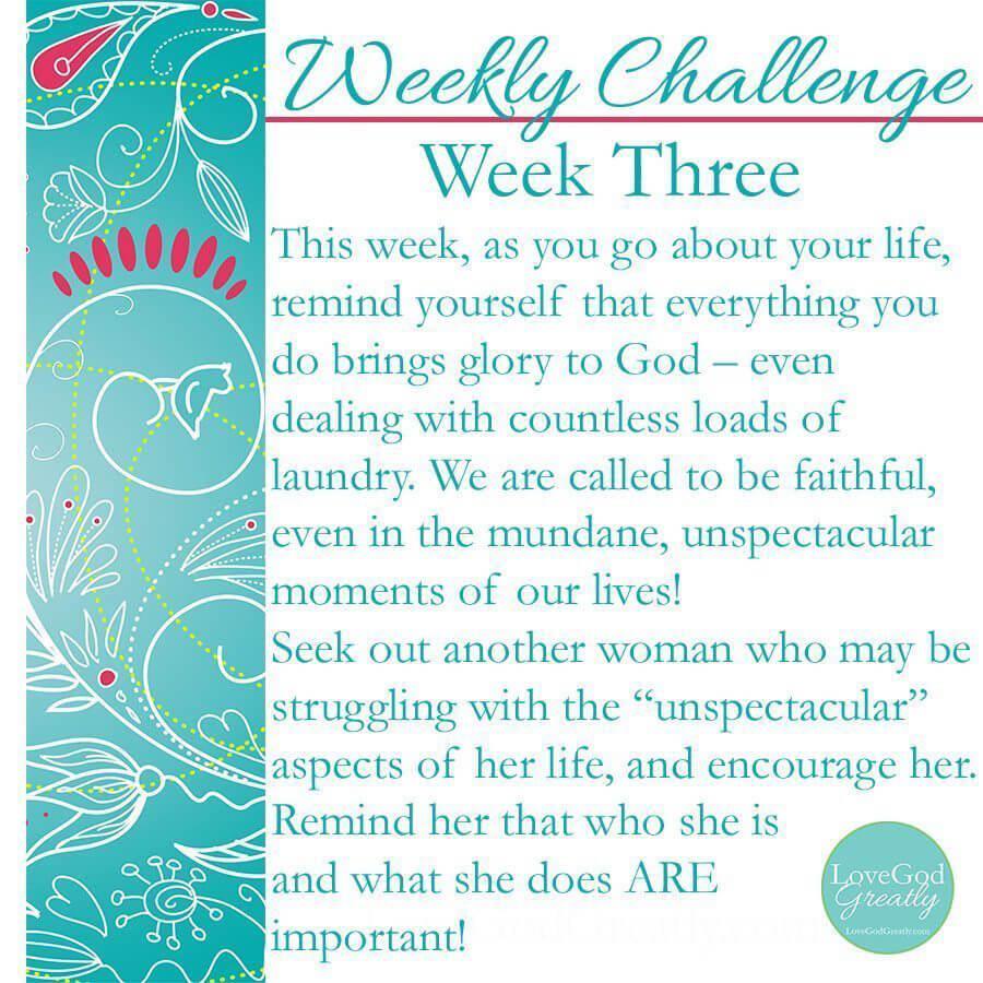 W3 Challenge