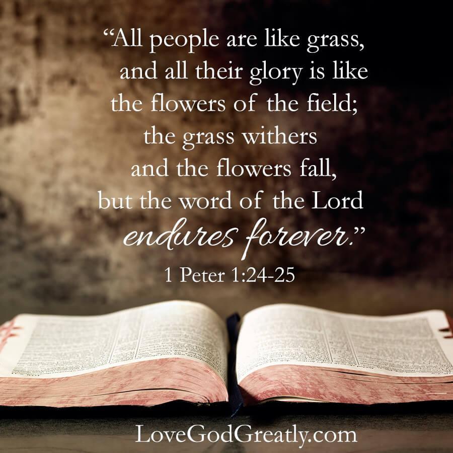 Love God Greatly- Peter Week 1 Memory Verse
