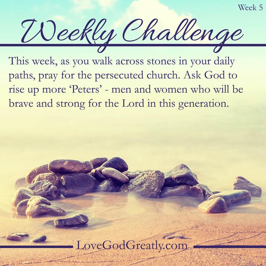 Weekly-Challenge-5