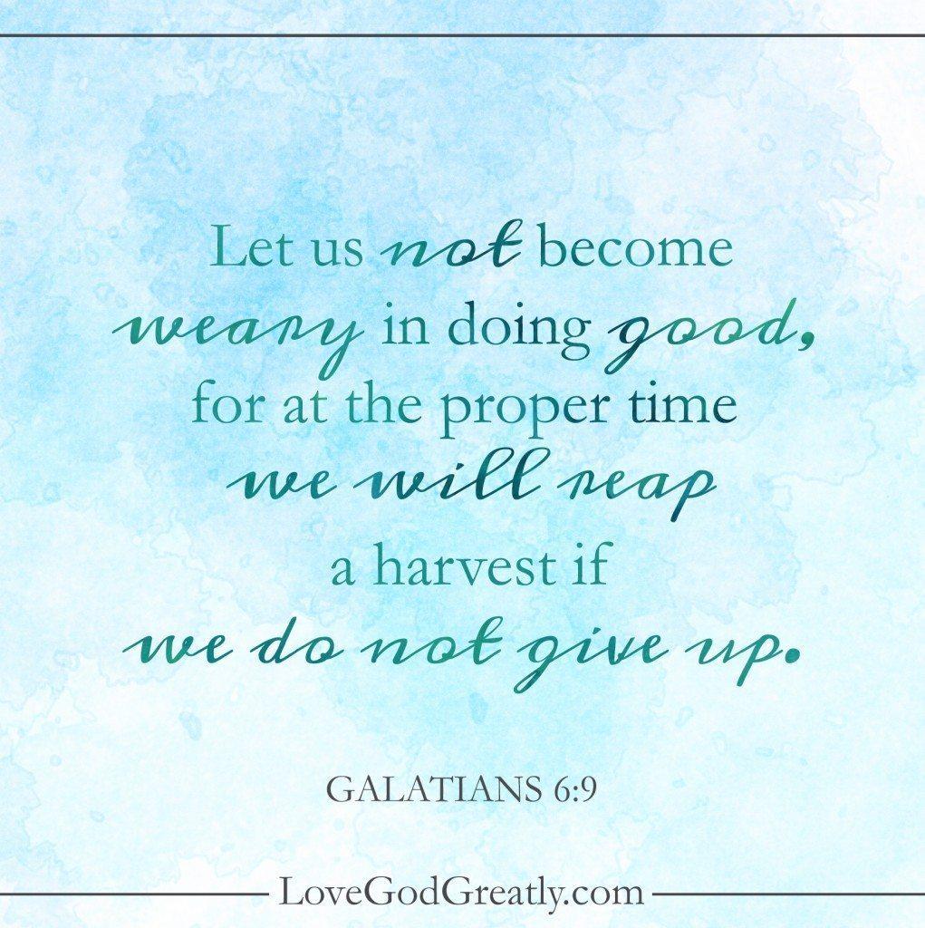 Galatians Week 6 Memory Verse