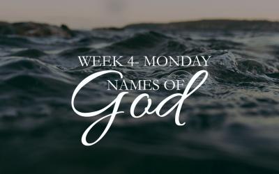Week 4 – Wonderful Counselor