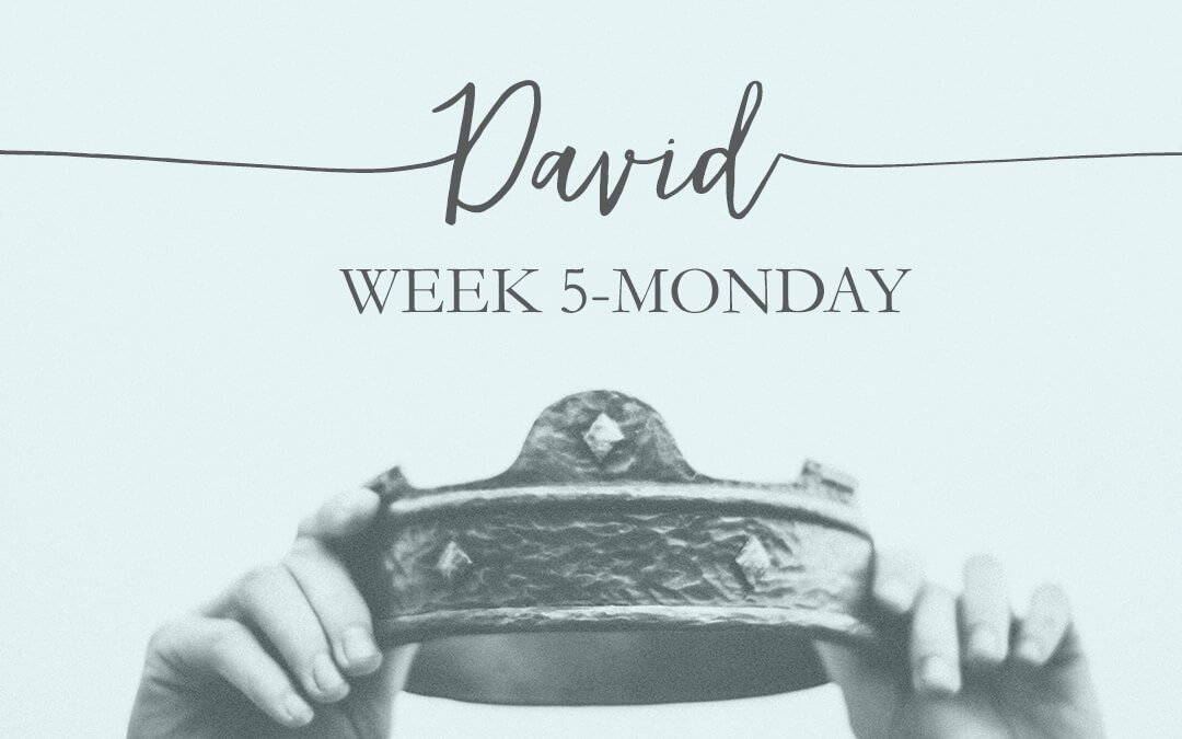 Week 5: David- The Friend