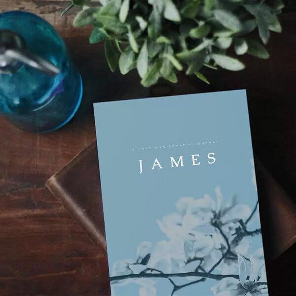 photo about Printable Bible Study on James named James Bible Research - Absolutely free On-line Bible Examine against Take pleasure in God