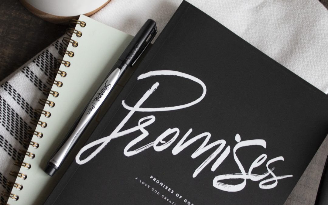 Announcing Our Next Study…Promises of God