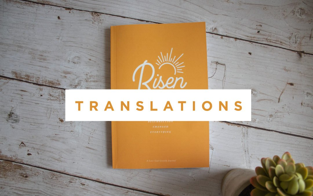 A New Understanding of Serving (Risen Translations)